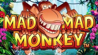 Mad Mad Monkey slot game
